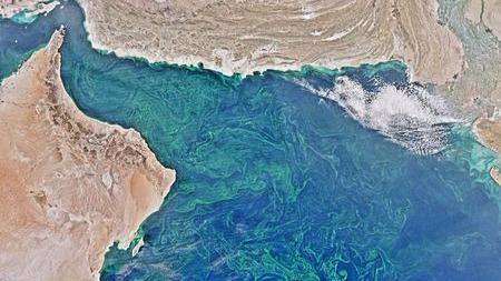 """世界上最大的""""死亡地带""""在阿拉伯海中的头图"""