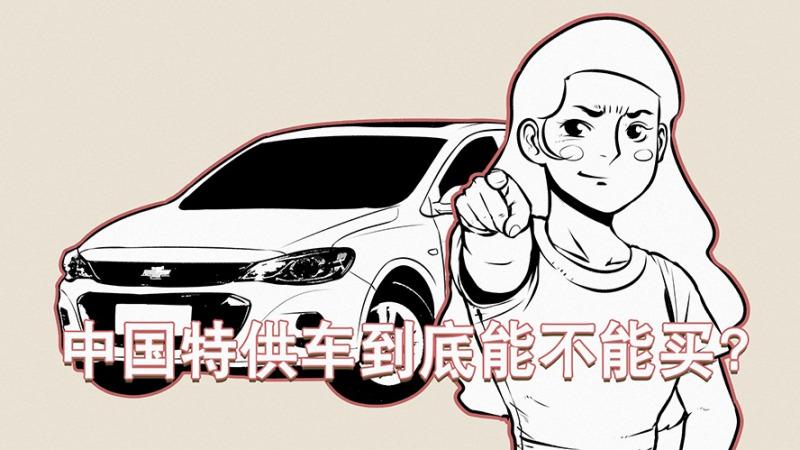 中国这么多特供车,到底是迎合还是敷衍消费者?