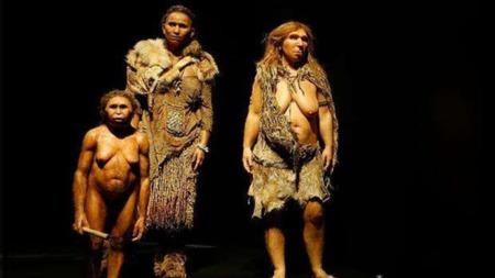 人类进化史中都有哪些同类存在过?