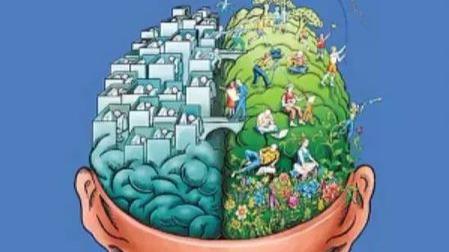 头越大越聪明?别给自己的智商找借口了的头图