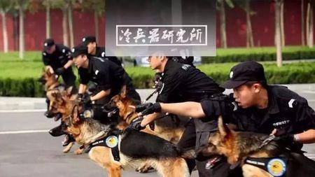 狗年话军犬|中国土狗竟曾吊打侵华日军军犬?