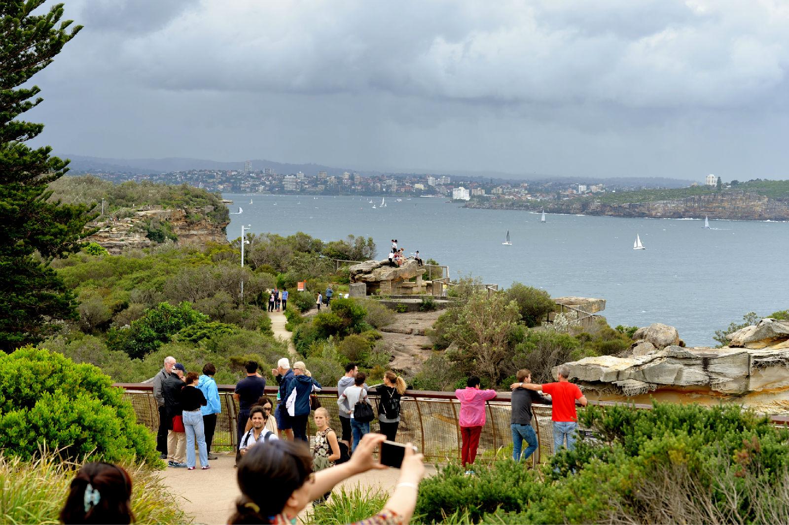 澳大利亚旅游攻略图片331