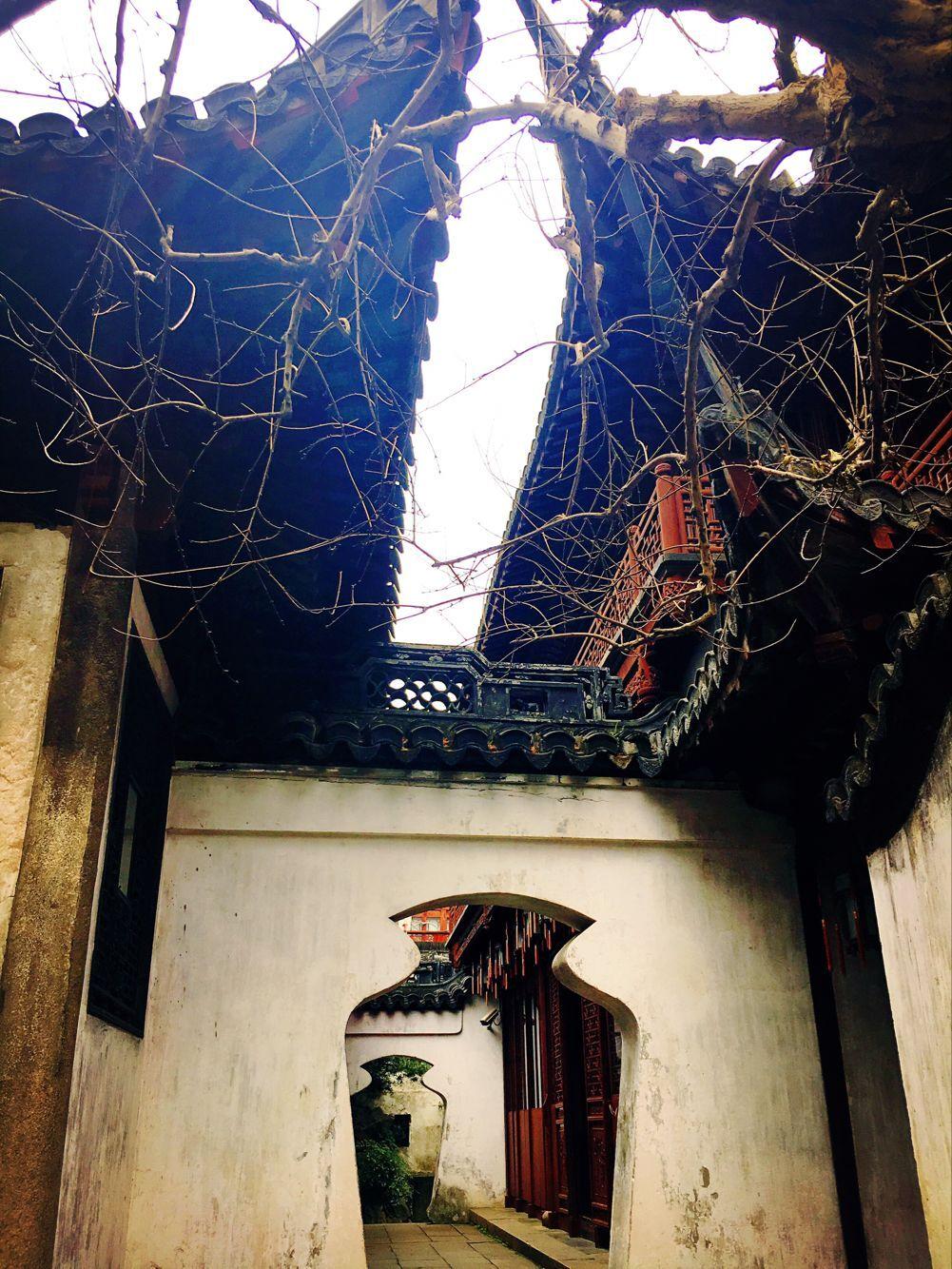 上海旅游攻略图片16