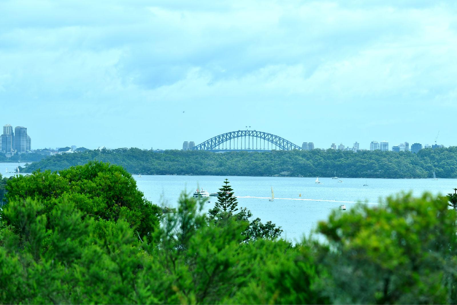 澳大利亚旅游攻略图片347