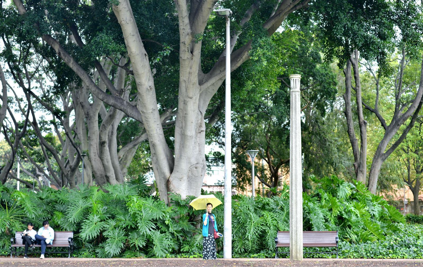 澳大利亚旅游攻略图片525