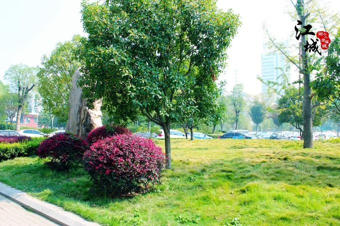 武汉旅游攻略图片46