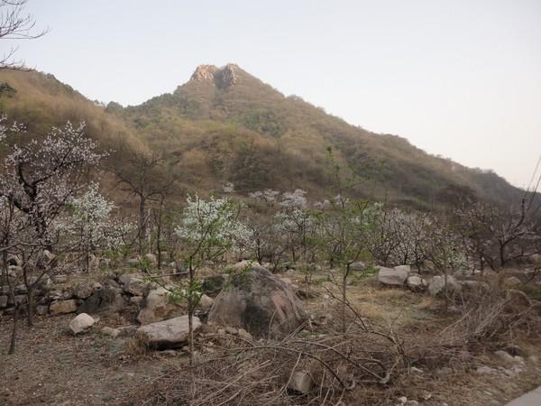 天津蓟县旅游攻略图片57