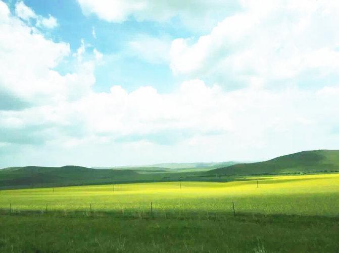 呼伦贝尔大草原旅游攻略图片18