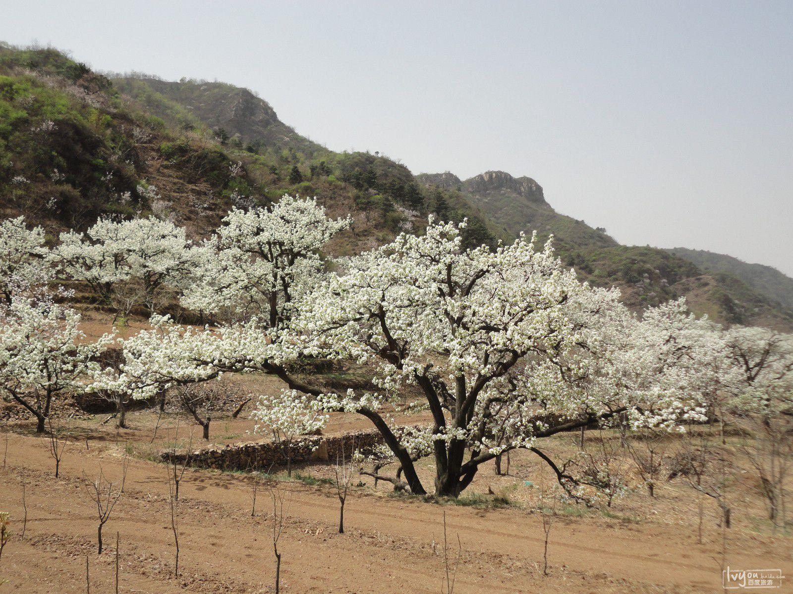 天津蓟县旅游攻略图片1