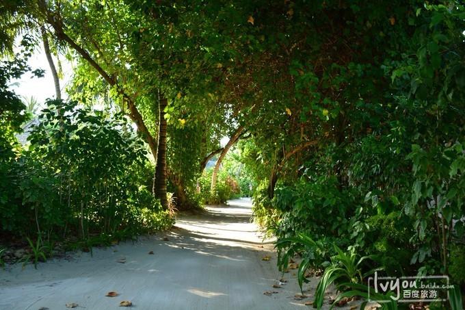 马尔代夫港丽岛旅游攻略图片24