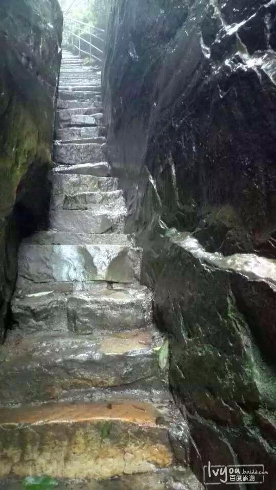 张家界国家森林公园旅游攻略图片35