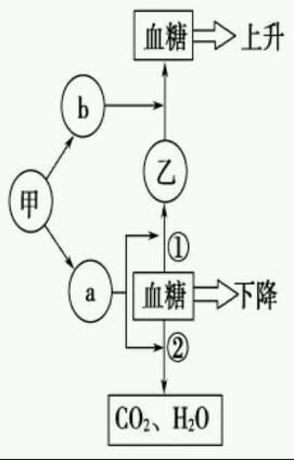 游码调节的原理图解_座椅高低调节原理图解