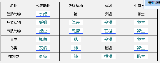 环节动物体表
