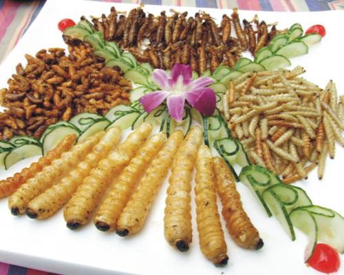 中国有什么特色小吃_请问中国各省各地的特色小吃分别是什么?_百度知道