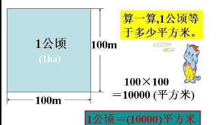 1亩地等于多少平方_1公顷等于多少亩或多少平方米_百度知道
