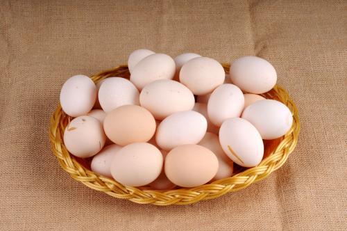 柴鸡蛋_求,柴鸡蛋所有耽美小说包,txt,最好百度云,谢谢_百度知道