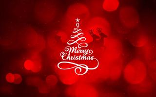 美体英文_美体的圣诞节英文怎么写图片