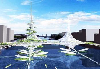未来的桥的图片