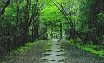 福海天氣預報_陣雨和中雨有什么區別?