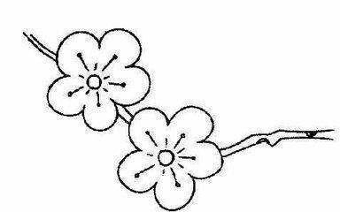 梅花怎么简笔画而又漂亮