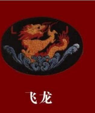 """隶属中国人民解放军东部战区的陆军特种部队""""飞龙"""";   隶属中国人民解放军南部战区的陆军特种部队""""华南之剑""""或""""南国利剑"""";   隶属中国人民解放军空军的特种部队""""蓝天利剑 """";   隶属中国人民解放军西部战区的陆军特种部队""""西南猎鹰"""";   闪电利剑臂章图片"""