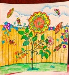 怎样简笔画一个漂亮的小花园