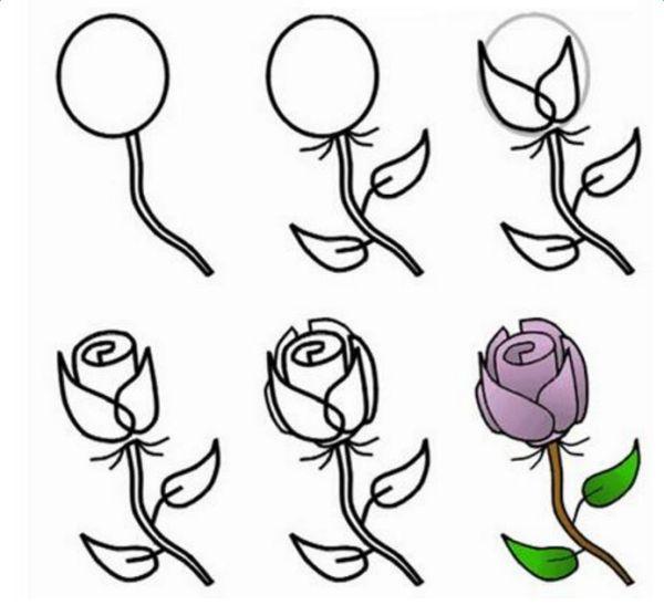 如何画玫瑰花 玫瑰花简笔画步骤图