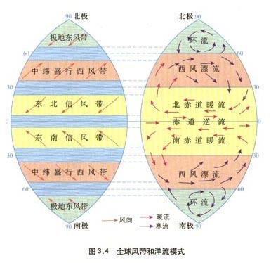 世界洋流分布模式图_寻求世界表层洋流分布图(要图片哦)_百度知道