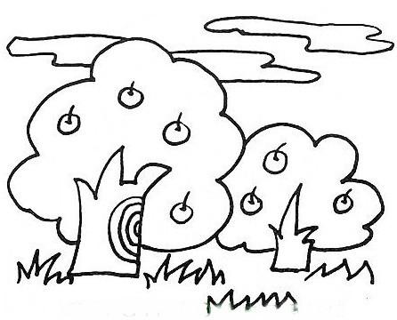 丰收的果园简笔画小学2年级