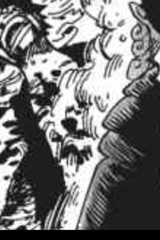 海贼王路飞的刀疤是卓洛砍的吗