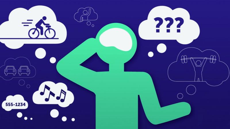 我们的大脑为何会开小差?