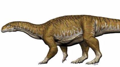 高能!巨大的恐龙化石颠覆古生物学家对三叠纪认识的头图