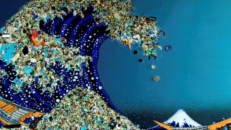 海洋中塑料垃圾去哪儿了?