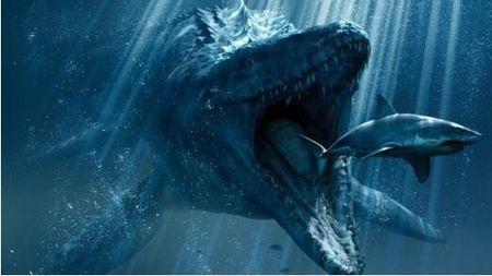 鲨鱼和?#33267;?#26159;同一个时代的物种,为什么?#33267;?#28781;绝了而鲨鱼没有?的头图