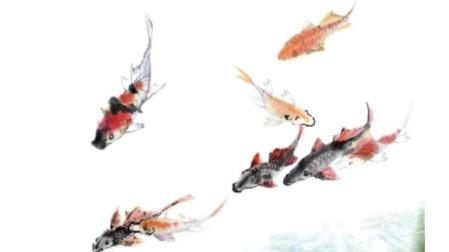 """锦鲤特种邮票全是日本种,其实它和中国""""爸爸""""渊源深"""
