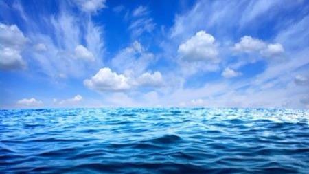 海洋里除了海洋生物,竟还有这么多珍贵资源!丨世界水日的头图