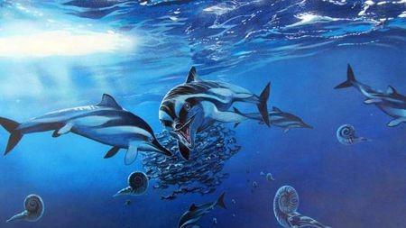 古生物学家是否命名了太多物种?的头图