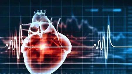 真相:心脏,真的不长癌吗?