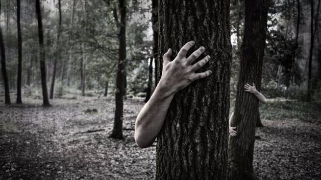 为什么恐怖片越可怕你越想看?